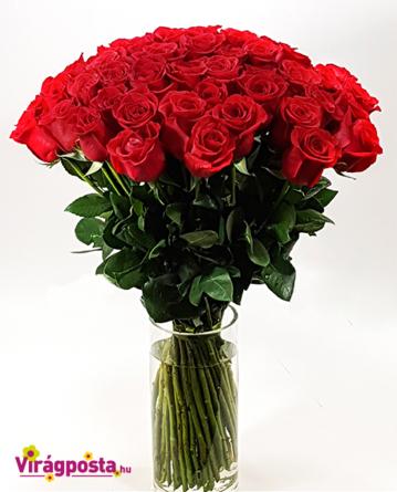 Virágposta - Csak szerelmes rózsák - óriás rózsacsokor
