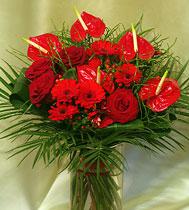 Virágposta - Szerelmes anthuriumok