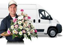 Virágposta - Szállítási pótdíj 500 Ft-tól