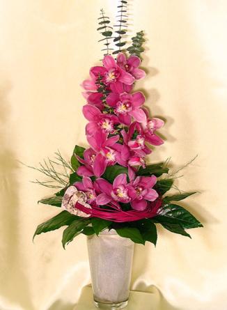 Virágposta - Rózsaszín orchidea ág