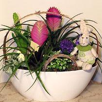 Virágposta - Húsvéti kert tillandsiával