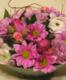 Virágposta - Virágtál rózsaszínben