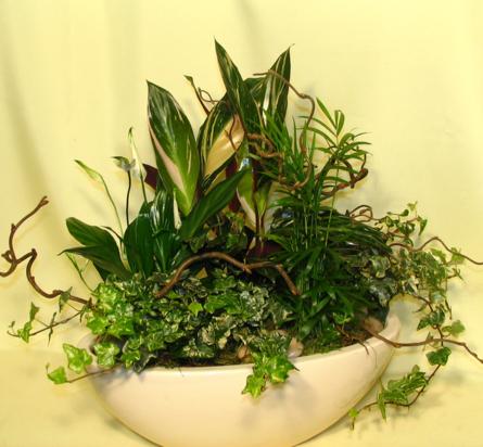 Virágposta - Elegáns növényösszeültetés