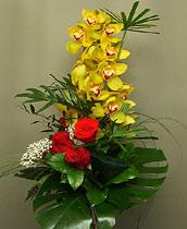 Virágposta - Boldog névnapot!