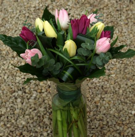 Virágposta - Tulipán-OK!