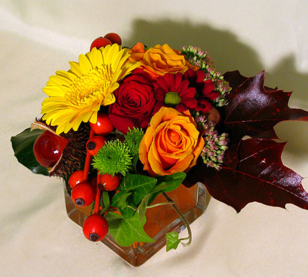 Virágposta - Az ősz kincsei