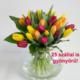 Virágposta - A napfény 50 árnyalata - tulipán csokor