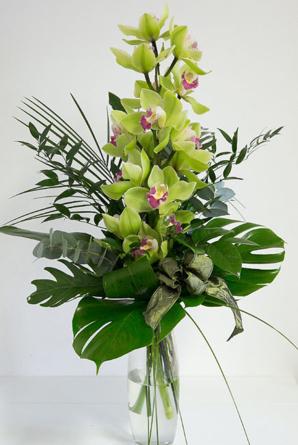 Virágposta - Orchidea ág zöldben
