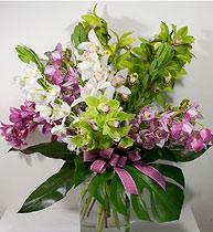 Virágposta - Óriás orchidea csokor