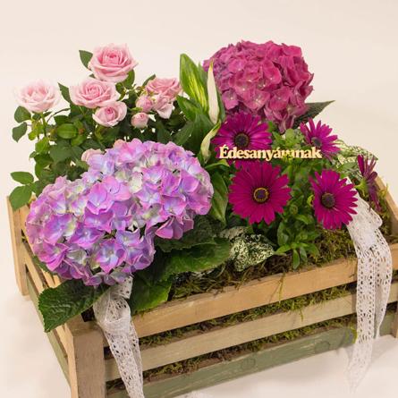 Virágposta - Anya kiskertje