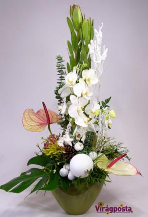 Virágposta - Virágtál fehér orchideákkal és anthuriummal - Karácsony fehérben